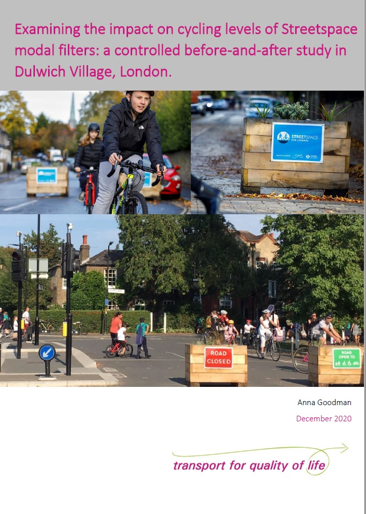 Goodman Dulwich study cover image 2020